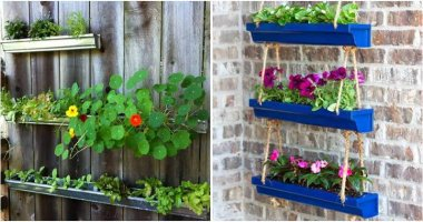 Collection of 18 Gutter Garden Ideas