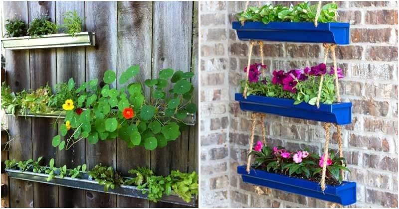 Collection of 18 Gutter Garden Ideas
