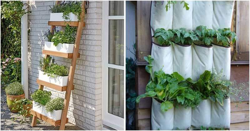 DIY Vertical Garden Projects For This Weekend
