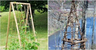 Easy DIY Garden Trellis Projects For Your Garden