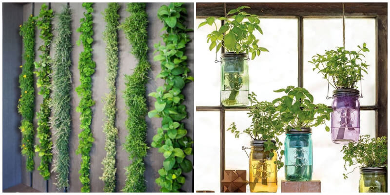 Tiny Indoor Garden Ideas For Your Limited Spaces