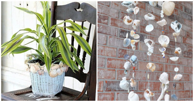 Easy DIY Seashell Ideas For Decorating Home
