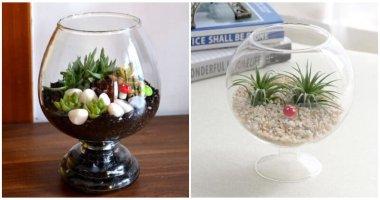 Wine Glass Terrarium Ideas For Mini Indoor Gardens
