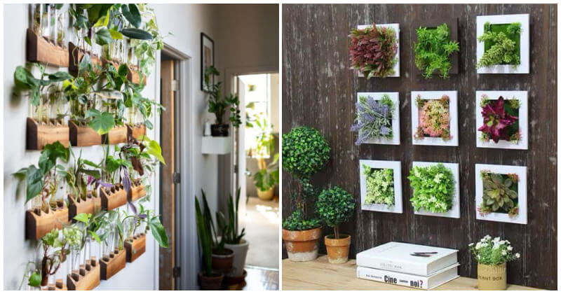Charming Wall Decor Ideas With Greenery and Plants
