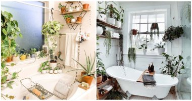Inspiring Hanging Plant Ideas For Your Bathroom From Instagram
