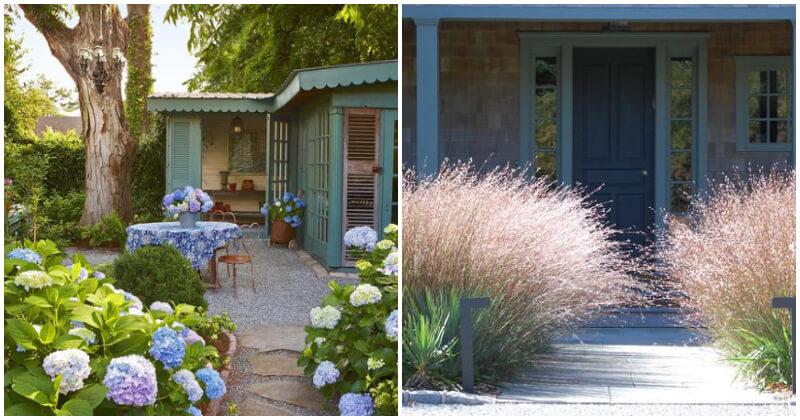 15 Best Beautiful Plants for Your Front Door Entryway