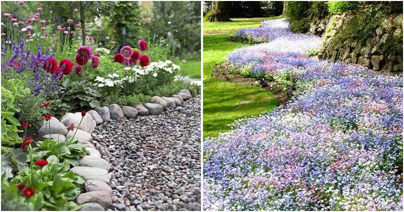 Stunning Garden Border Ideas