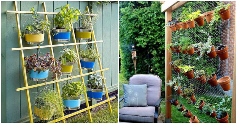 Charming Vertical Garden Ideas For Your Fence