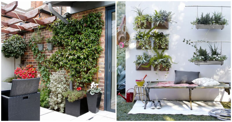 21 Stunning Patio Wall Ideas With Plants