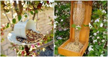 25 DIY Bird Feeder Ideas For A Lively Garden