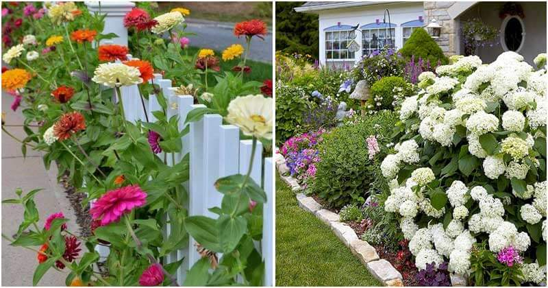 25 Inspiring Flower Garden Pictures