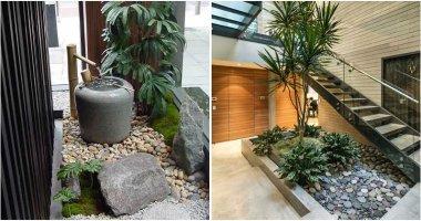 14 Astound Indoor Rock Garden Ideas