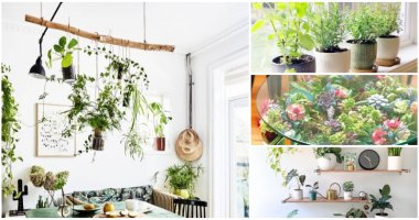 20 Creative Saving Space Ideas When Growing Plants In Small Room