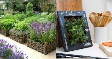 22 Creative Herb Garden Design Ideas