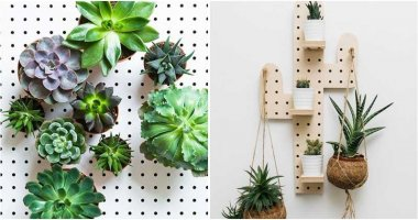 23 Brilliant Ideas To Use Pegboards For Your Houseplants