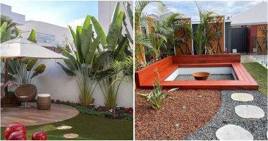 20 Inspiring Tropical Backyard Ideas